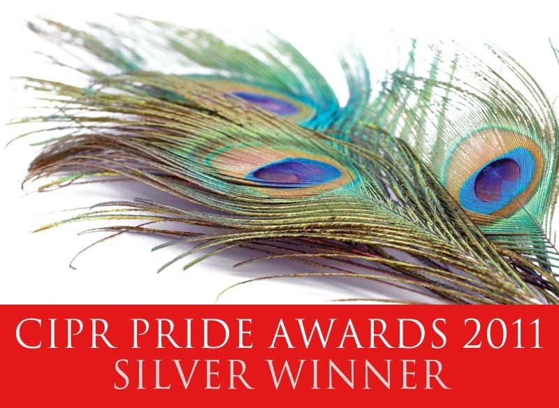 Logo 2011 2011-pride-silver-logo